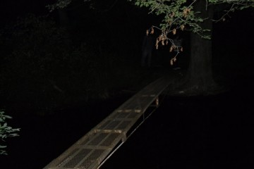 1 spooky haunted bridges
